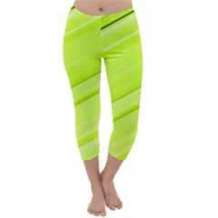 Bright Green Stripes Capri Winter Leggings