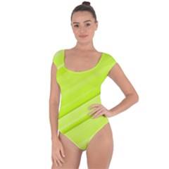 Bright Green Stripes Short Sleeve Leotard (ladies)