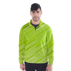 Bright Green Stripes Wind Breaker (men)