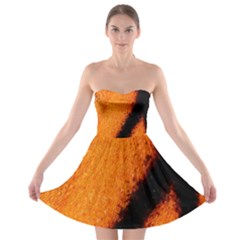 Butterfly Design 5 Strapless Dresses