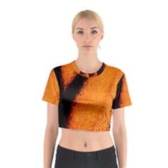 Butterfly Design 4 Cotton Crop Top