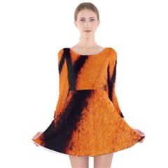 Butterfly Design 4 Long Sleeve Velvet Skater Dress