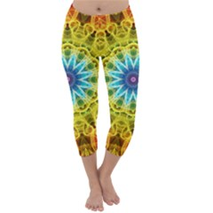 Flower Bouquet Capri Winter Leggings