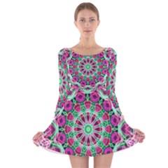 Flower Garden Long Sleeve Velvet Skater Dress