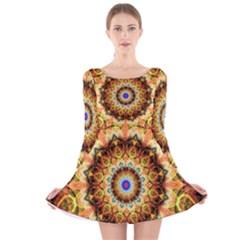 Ochre Burnt Glass Long Sleeve Velvet Skater Dress