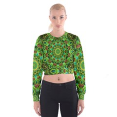 Peacock Feathers Mandala Women s Cropped Sweatshirt