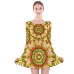Red Green Apples Mandala Long Sleeve Velvet Skater Dress