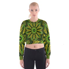 Woven Jungle Leaves Mandala Women s Cropped Sweatshirt