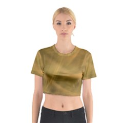 Brown Fog Cotton Crop Top