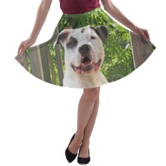 Pit Bull T-Bone s Tree House A-line Skater Skirt