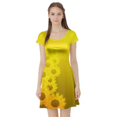 Sunflower Short Sleeve Skater Dresses