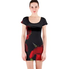 Roses 2 Short Sleeve Bodycon Dress