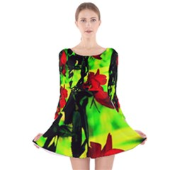Red Roses and Bright Green 1 Long Sleeve Velvet Skater Dress