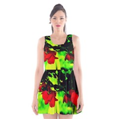 Red Roses and Bright Green 2 Scoop Neck Skater Dress