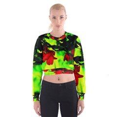 Red Roses and Bright Green 2 Women s Cropped Sweatshirt