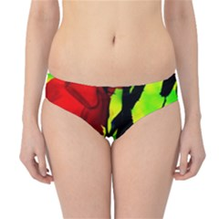 Red Roses And Bright Green 3 Hipster Bikini Bottoms