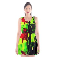 Red Roses And Bright Green 3 Scoop Neck Skater Dress