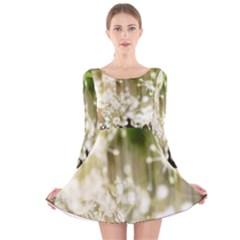 Little White Flowers Long Sleeve Velvet Skater Dress