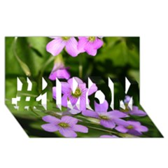 Little Purple Flowers #1 Mom 3d Greeting Cards (8x4)