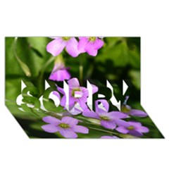Little Purple Flowers Sorry 3d Greeting Card (8x4)