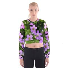 Little Purple Flowers Women s Cropped Sweatshirt