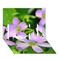 Little Purple Flowers 2 I Love You 3d Greeting Card (7x5)