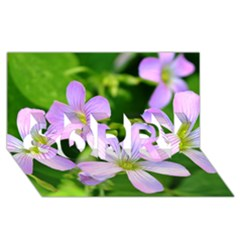 Little Purple Flowers 2 Sorry 3d Greeting Card (8x4)