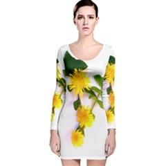 Margaritas Bighop Design Long Sleeve Velvet Bodycon Dress