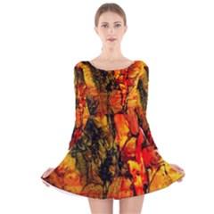 Jandi Long Sleeve Velvet Skater Dress