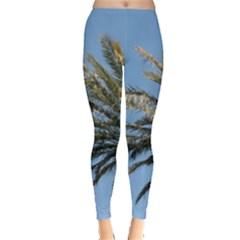 Tropical Palm Tree  Leggings