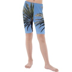 Tropical Palm Tree  Kid s Mid Length Swim Shorts