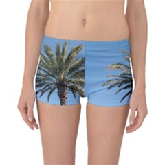 Tropical Palm Tree  Boyleg Bikini Bottoms