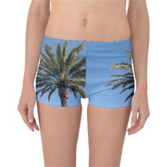 Tropical Palm Tree  Reversible Boyleg Bikini Bottoms