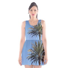Tropical Palm Tree  Scoop Neck Skater Dress