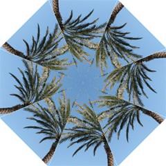 Tropical Palm Tree  Folding Umbrellas