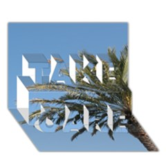 Tropical Palm Tree  Take Care 3d Greeting Card (7x5)