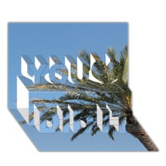 Tropical Palm Tree  You Did It 3d Greeting Card (7x5)