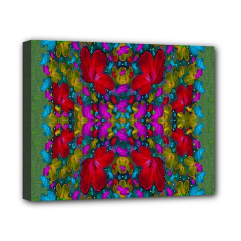 May Your Wonderful Dreams Come True In Fauna   Canvas 10  x 8