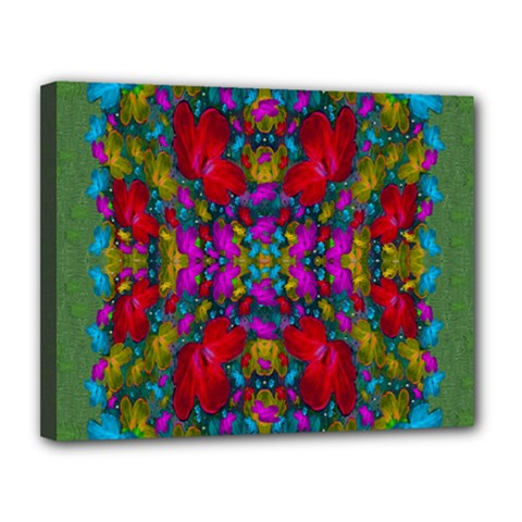 May Your Wonderful Dreams Come True In Fauna   Canvas 14  X 11