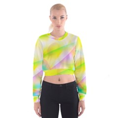 New 7 Women s Cropped Sweatshirt