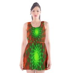New 10 Scoop Neck Skater Dress