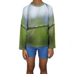 After the rain Kid s Long Sleeve Swimwear
