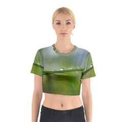 After the rain Cotton Crop Top