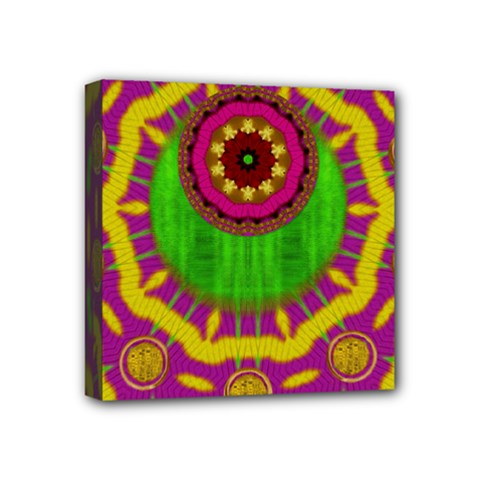 Let The Calm And The Sunshine In Mini Canvas 4  X 4