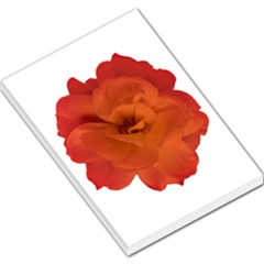 Red Rose Photo Large Memo Pads