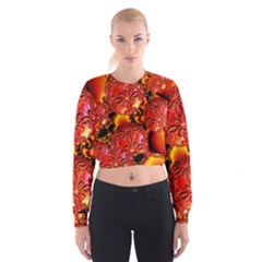 Flame Delights, Abstract Red Orange Women s Cropped Sweatshirt