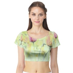 Softness Of Spring Short Sleeve Crop Top (Tight Fit)