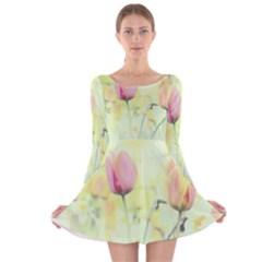 Softness Of Spring Long Sleeve Velvet Skater Dress