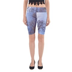 Natural Brown Blue, Large Trees in Sky Yoga Cropped Leggings