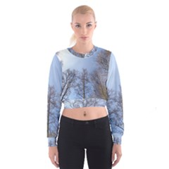 Natural Brown Blue, Large Trees in Sky Women s Cropped Sweatshirt